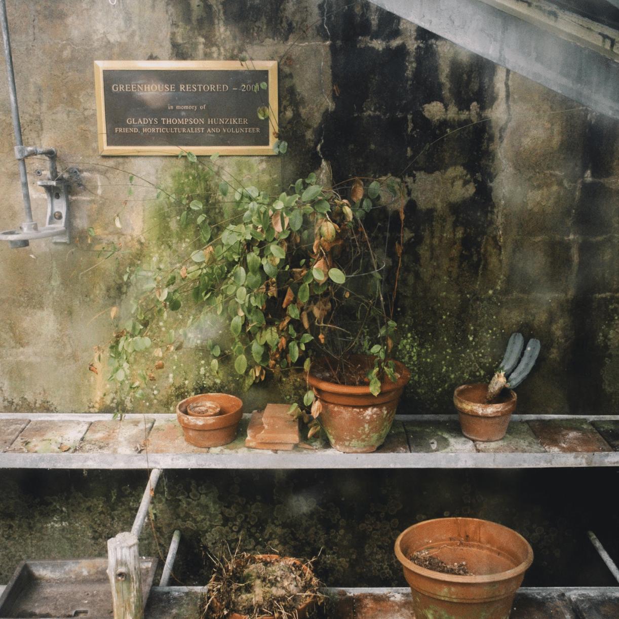 van vleck gardens